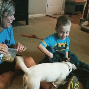 Max with Ella during puppy selection. He ended up being matches with Ella's sister, Sam